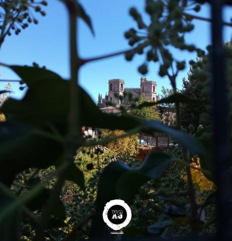 Sé Catedral da Guarda vista de longe